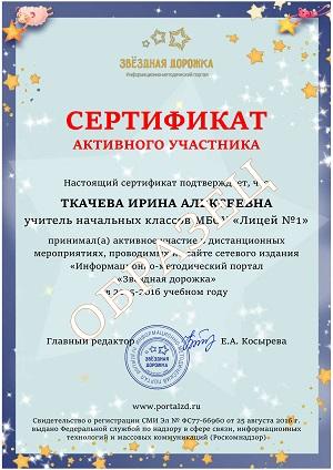 сертификат активного участника сайта